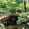 Bonsai Garden – Decorative Window Well Liner