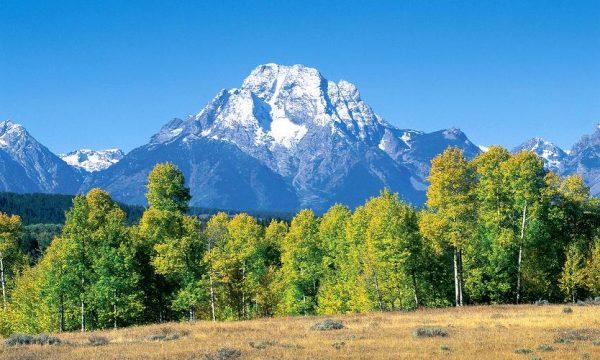 Mountain – Window Well Liner