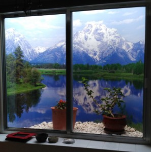 Window Well Liners - Customer installed Mountain Scene