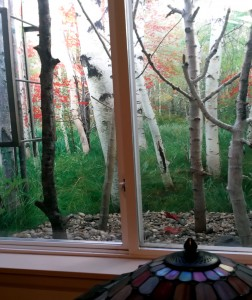 Window Well Liners - Customer installed Woods Scene