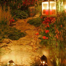 Night Garden Scene