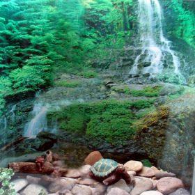 Waterfall window well liner